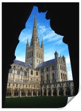Norwich Cathedral from the Cloisters, Print