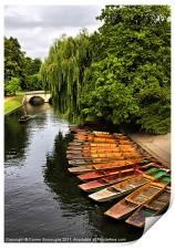 Punting On The Cam, Cambridge., Print