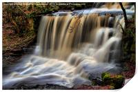 DALESCAPES: Crackpot Foss, Print