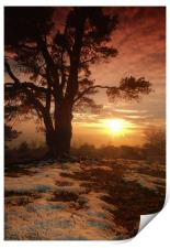 Sunset on Leith Hill, Print