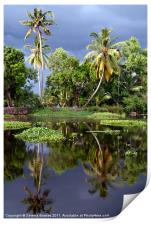 Palm Trees in a Storm Kerala, Print