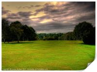 "Its A ""Fairway"" On A Stormy Day!, Print"