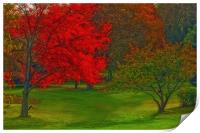 AUTUMN IN THE PARK, Print