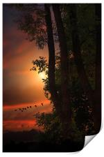 LATE AUGUST SUNSET, Print