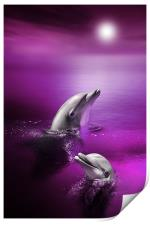 Dolphin Delights, Print