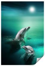 Delightful Dolphins, Print