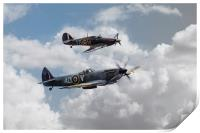 RAF Fighting Pair, Print