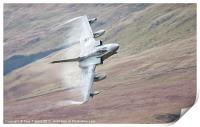 Gr4 on a low level approach, Print