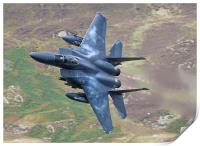 F15 Eagle with Afterburners, Print