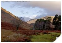 The Beauty of Wasdale, Print
