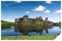 Spring At Caerphilly Castle 1, Print
