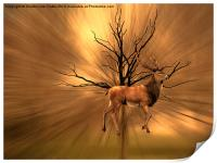 Golden Stag, Print