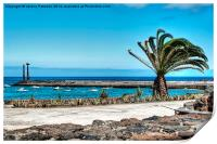 Costa Teguise Harbour, Print