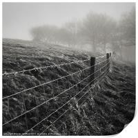 Barbed Wire Fence, Print