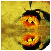 (Sunflower)- A Reflection of a Summer Day 2, Print