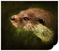Otter, Lutra lutra., Print