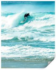Surfing fun, Print