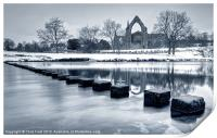 Bolton Abbey Reflections, Print