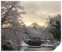 Winter on the Basingstoke Canal, Print