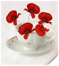 cup of poppy's, Print