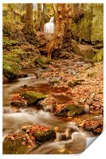 Falling through Lumsdale, Print