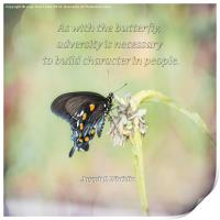 Building Character Butterfly, Print