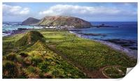 Macquarie Island and The Research Station, Print
