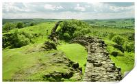 Hadrians Wall In The Landscape, Print