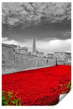 Tower of London poppy Blood Swept Lands, Print