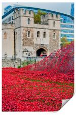 Tower of London poppies Blood Swept Lands, Print