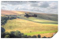 Thumper Flies Down The Coombes Valley, Print