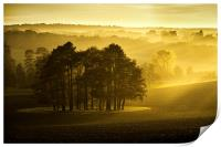 The Downs, Print