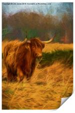 Highland cow with painterly effect, Print