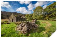 Welsh Cottage Ruin, Print