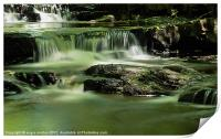Smooth Water at Summerhills Force, Print