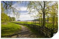 Round pole fence in spring, Print