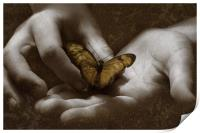 The Butterfly Effect, Print