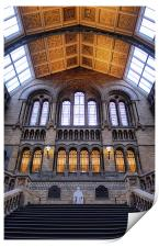 The Natural History Museum London, Print