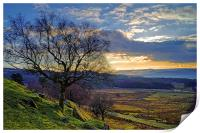 Longshaw Estate Sunset, Print