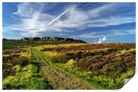 Footpath to Stanage Edge 2, Print