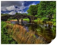 Two Bridges and West Dart River , Print