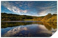 Rivelin Dams Reflections, Print