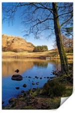 The Banks of Blea Tarn                      , Print