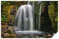 Lumsdale Falls in Summer                      , Print