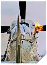 Flaming Spitfire, Print