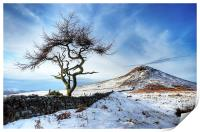 Winter at Roseberry Topping, North Yorkshire, Print