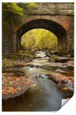 Bridge over May Beck, Print