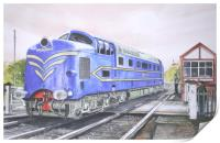 The English Electric Deltic, Print