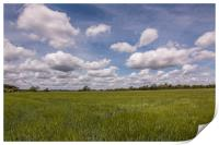 Fields And Skies Of Summer., Print