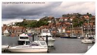 Whitby Harbour , Print